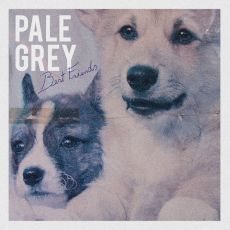 Pale Grey - Best friends
