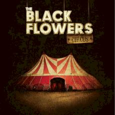The Black Flowers - Circus