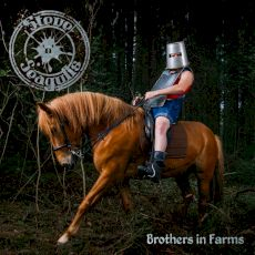 Steve'N'Seagulls - Brothers in farms