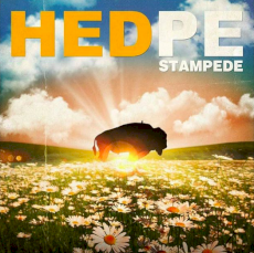(hed)p.e. - Stampede
